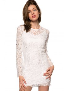 Lace Hollow Out Long Sleeve Dress