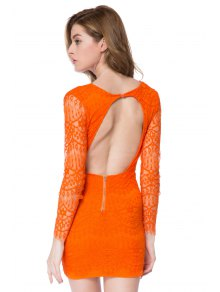 Lace Plunging Neck Bodycon Dress