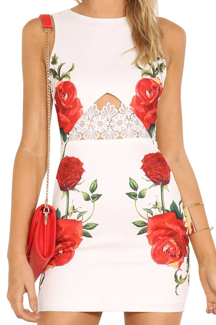Rose Print Sleeveless Lace Dress