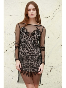 See-Through Long Sleeves Mesh Lace Dress