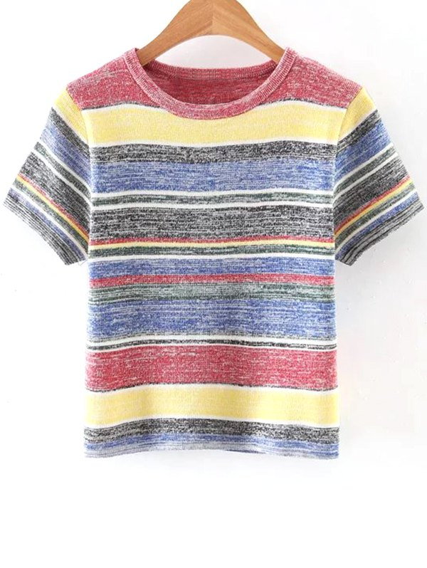 Ribbed Knit T Shirt 182469401