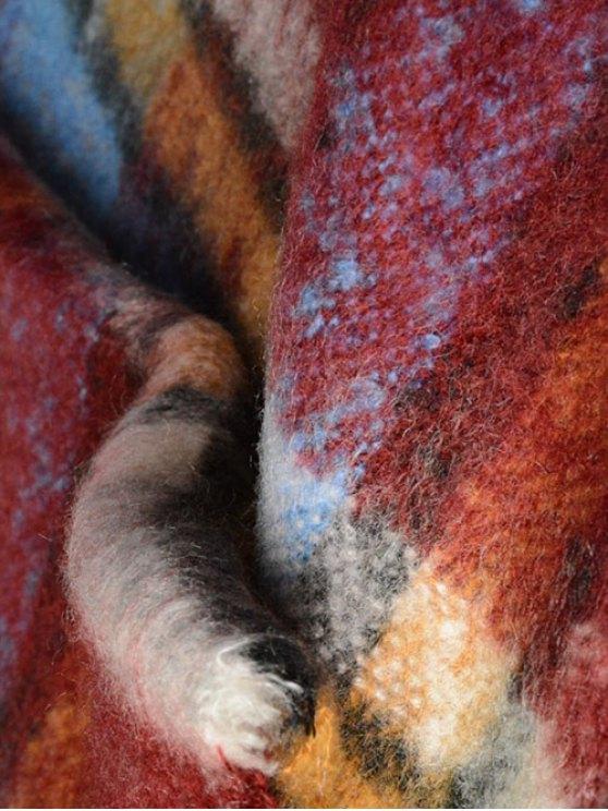 Frayed Edge Tartan Shawl Wrap Scarf - WINE RED  Mobile