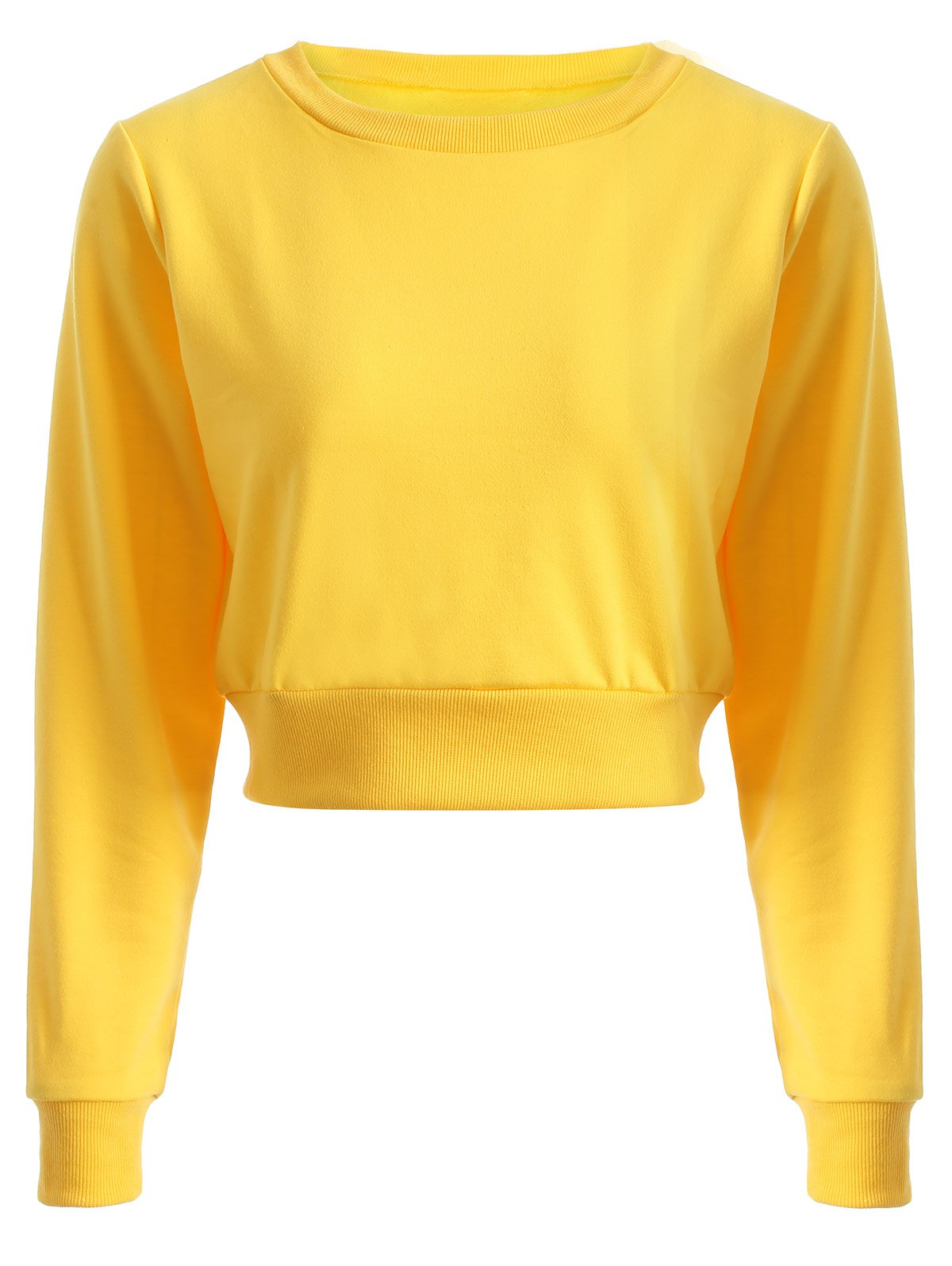 Casual Sports Cropped Sweatshirt