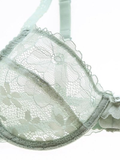 Low Cut Sheer Floral Lace Bra Set - GREEN 85B Mobile