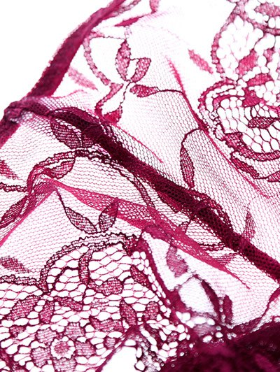 See Thru Floral Lace Panel Bra Set - WINE RED 70B Mobile