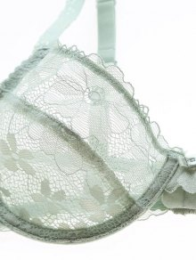 Low Cut Sheer Floral Lace Bra Set - BLACK 75B