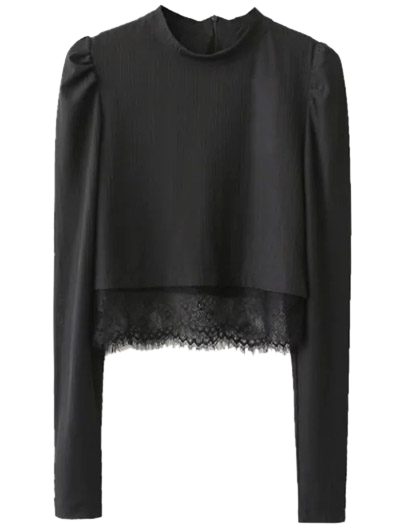 Lace Panel Stand Collar Cropped Top - BLACK M Mobile