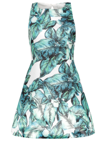 Back Stitch Printed A-Line Dress