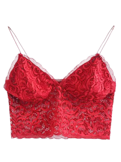 Embroidered Lace Panel Bra - Wine Red