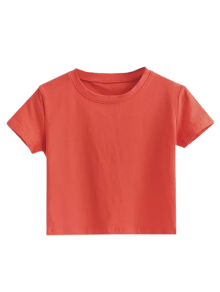 Short Sleeve Mock Neck Cropped Tee
