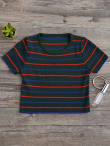 Knitting Stripes Cropped Top - Green