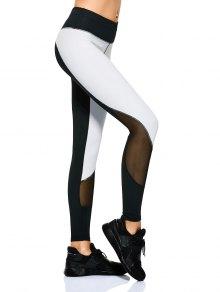 Mesh Panel Color Block Sporty Leggings